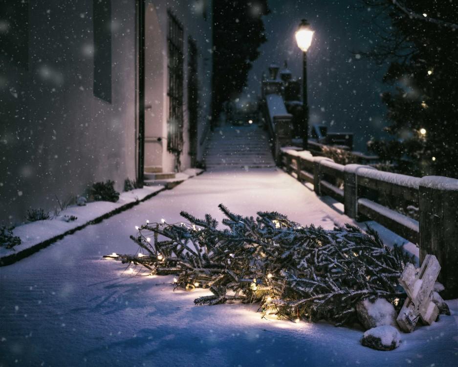 Weihnachtskarte_Motivbeispiel_1